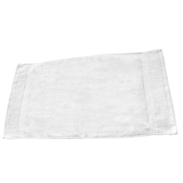 Deluxe Terry Hand Towels, CHT05