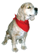 Premium Triangular Pet Bandanas CLEARANCE, BAN14