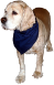 Premium Triangular Large Pet Bandanas CLEARANCE, BAN15