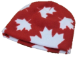 Premium Patriotic Youth Fleece Beanies, YT20