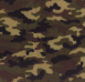 Luxury CAMOUFLAGE Fleece Blankets, B98