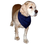 Premium Triangular Large Pet Bandanas, BAN04